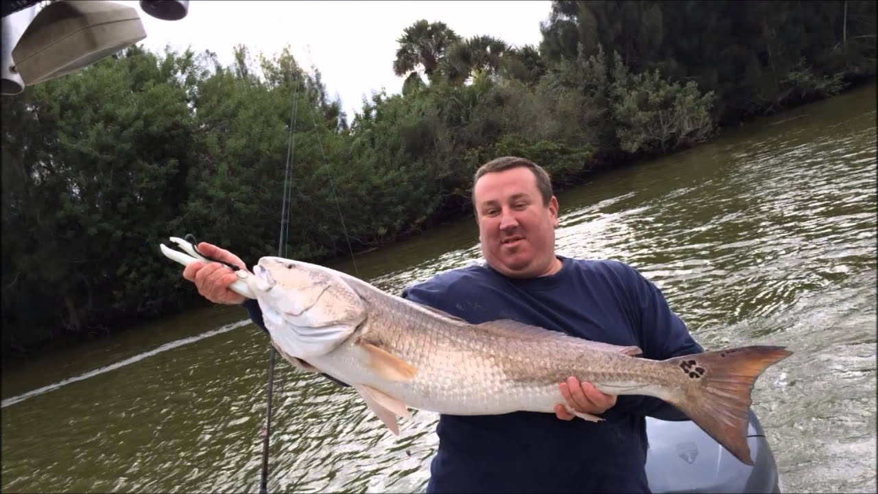 monster redfish haulover canal 11 24 15 youtube
