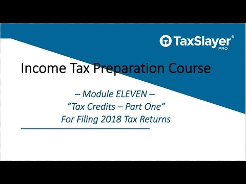 2018 Income Tax Course – Module Eleven – Credits (Part One)