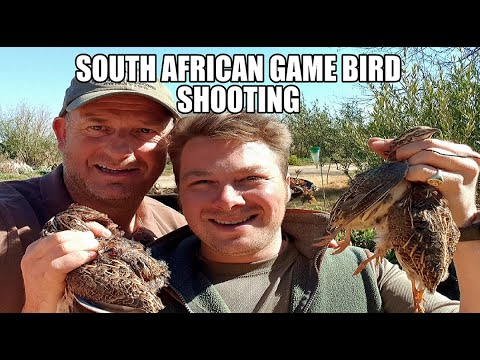 WingShooting in Africa bird hunting Holidays £175 per day  2018 South African Game bird Hunting