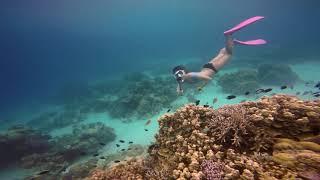Lặn Ngắm San Hô Phú Quốc Cùng Phú Quốc Explorer