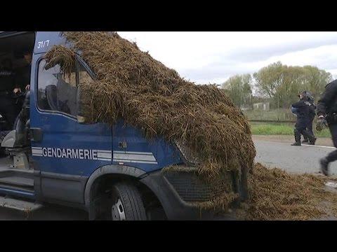Florange Les Agriculteurs Répandent Du Fumier Pour Interpeller François Hollande