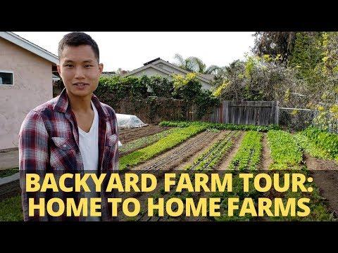 First Year Farmer: Backyard Farm Tour And Interview