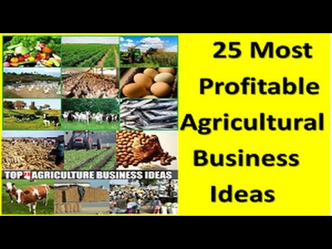 25 Most Profitable Agricultural Business Ideas || Agri Busin