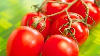 Пикировка рассады томатов!(Как пикировать рассаду томатов? Сажаем помидоры на рассаду 1 часть - http://youtu.be/nn5N2ERNebM Много интересных тем,..., 2014-03-09T17:24:47.000Z)