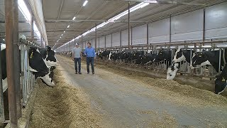Living the Dream | Thomson Dairy Services