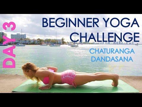 Day 3 Beginner Yoga Challenge: Chaturanga Dandasana