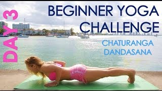 Day 3 Beginner Yoga Challenge: Chaturanga Dandasana