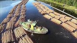 Tug Heinävesi preparing floating log bundles for towing in Oravikoski