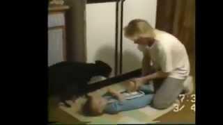 Cachorro ajuda mãe a trocar o bebê