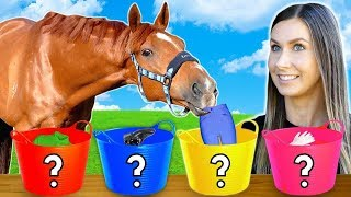 HORSE PICKS MY OUTFIT! | Equestrian Challenge