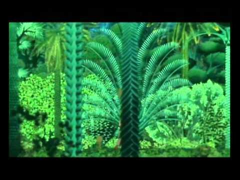 Kiriku und die Zauberin | Trailer