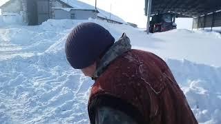 31января заводим хряка чистить снег