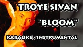TROYE SIVAN - BLOOM (KARAOKE / INSTRUMENTAL)