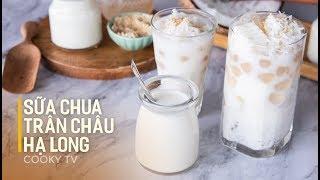 #CookyVN - Cách làm SỮA CHUA TRÂN CHÂU CỐT DỪA nức tiếng HẠ LONG | COCONUT YOGURT BUBBLE - Cooky TV