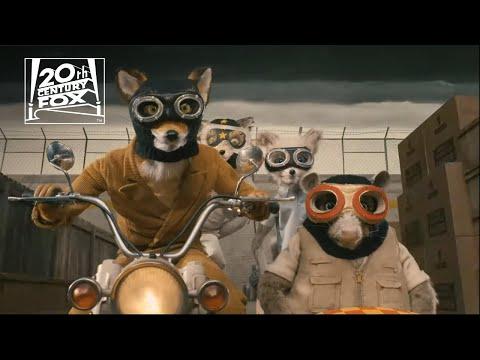 "fantastic-mr.-fox-|-""pure-animal-craziness""-clip-|-fox-family-entertainment"