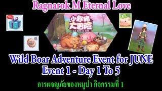 [ All server ] Ragnarok M Eternal love : Wild Boar Adventure Event 1 - Day 1 To 5 [ END ]