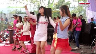 Goyang Walang Kekek - All Artis Om.SH Live Darmayasa Banjarnegara