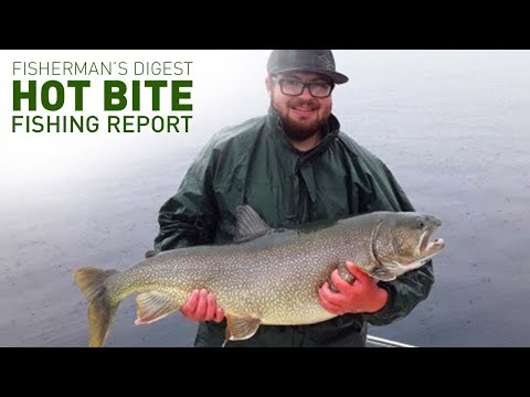 Stannard Rock Lakers And More Fishing Reports! Hot Bite Fishing Report - July 15th