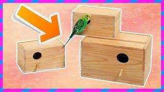 как сделать домик для волнистых попугаев своими руками