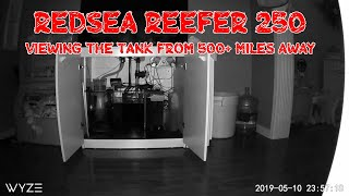 Red Sea Reefer 250 | BACK From Vacation | Lessons Learned | Some Issues But Overall A Success!