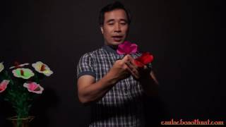 Hướng dẫn ảo thuật tay không bắt hoa