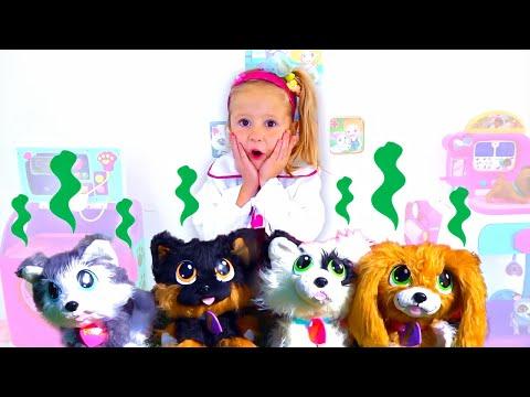 Stacy juega en una clnica de mascotas