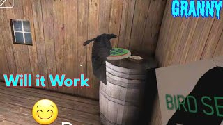 how-to-freeze-granny-pet-crow-granny-version-1-7