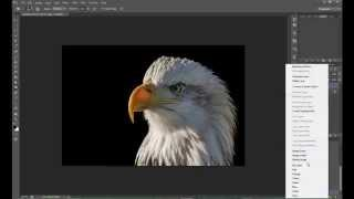 Create Black Background in Photoshop