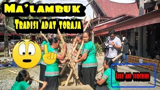 TORAJA To Ma 39 Lambuk This is Toraja Culture In SouthSulawesi INDONESIAN