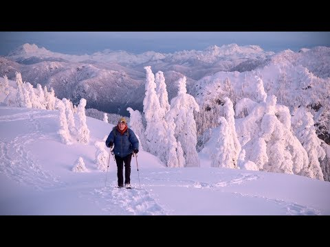 Winter Landscape Photography | Mt. Seymour | Britiish Columbia