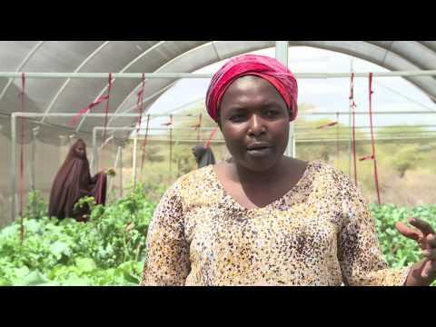 Kenya Resilient Arid Lands Partnership for Integrated Development