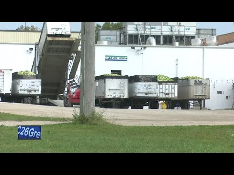 Woman loses arm in industrial accident at Lakeside Foods