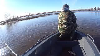 НАКОНЕЦ ТО ВЕСНА Первые дни рыбалки сетями Вода упала до предела но улов ОТЛИЧНЫЙ