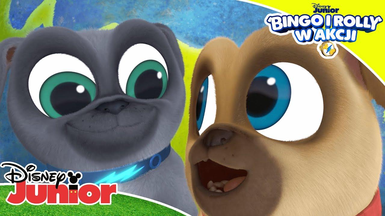 ???????? Kocham Ziemię! | Bingo i Rolly w akcji | Disney Junior Polska