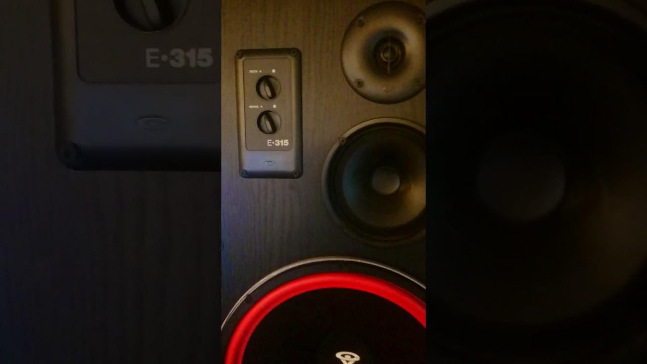 Vintage Cerwin Vega D9 & Cerwin Vega E315
