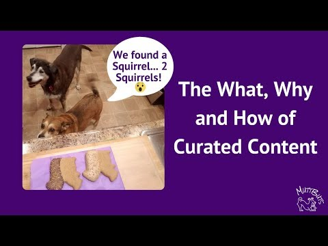 The What, Why and How of Curated Content