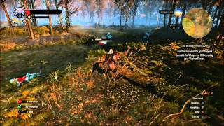 Witcher 3 Find the Bones of the Spirit Whispering Hillock Quest