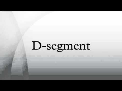 D-segment