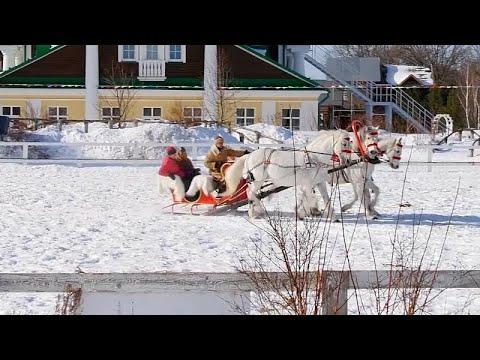 شاهد سباق حواجز مثير.. خيولٌ تجرّ عربات زلاجة في كروتوفو الروسية…