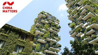 5 Awesome Green Projects in China