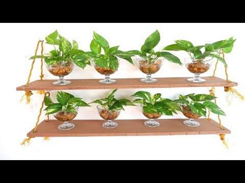 Money Plant / Pothos Leaf Cuttings Impressive DIY Wall Decoration Idea to Bring Freshness at Home