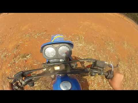 Pig Hunting From Motobikes And Utes Western Nsw
