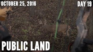 Public Land Day 19: Funnel Area Bucks | Midwest Whitetail