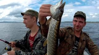 MEPPS SYCLOPS косит щуку! Рыбалка на озере Иван