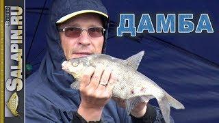 Рыбалка с фидером на дамбе Финского залива в проливной дождь [salapinru]