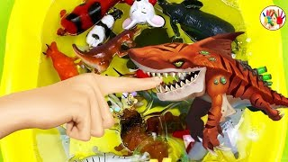 Learn Wild Zoo Animals Names For Kids Sea Animals For Children | Surprise Kids TV