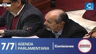 Sesión Comisión de Constitución 7/7 (09/07/19)