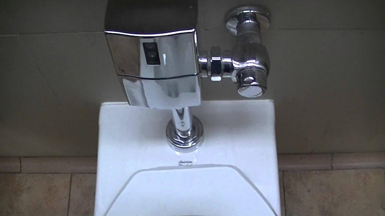 Self Flushing Toilet