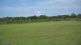 A View At The New Kennel Land  Huge 11 Acres!!