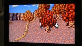 Let's Play Animal Crossing Wii Partie 18 - Malheureux problème de connexion.